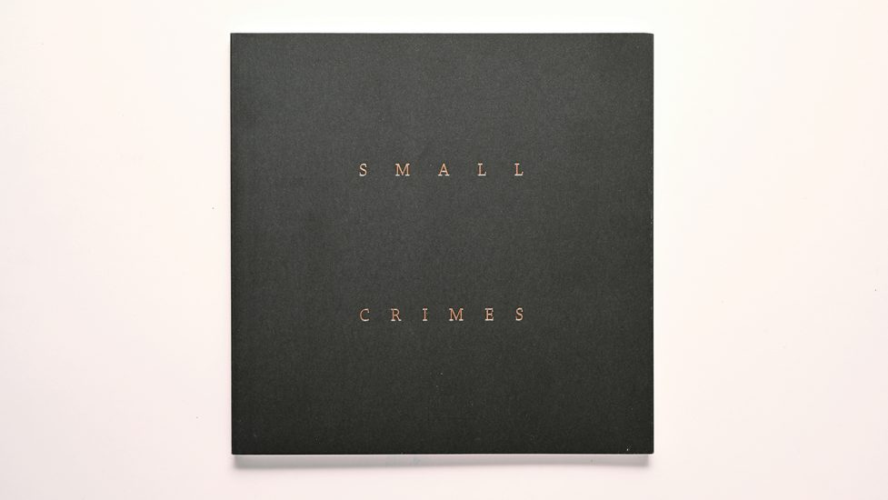 001_Small Crimes Book copy