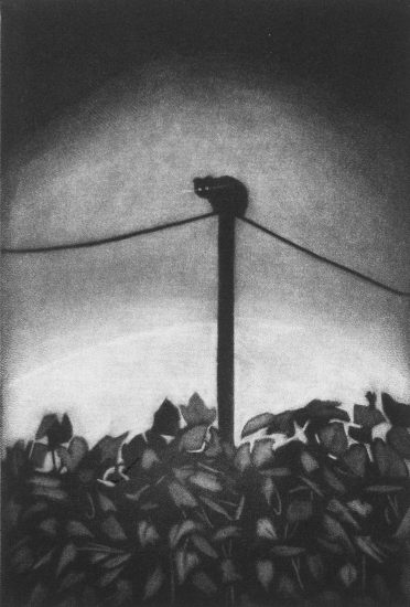 Superstition, 10x15cm, mezzotint, 2021